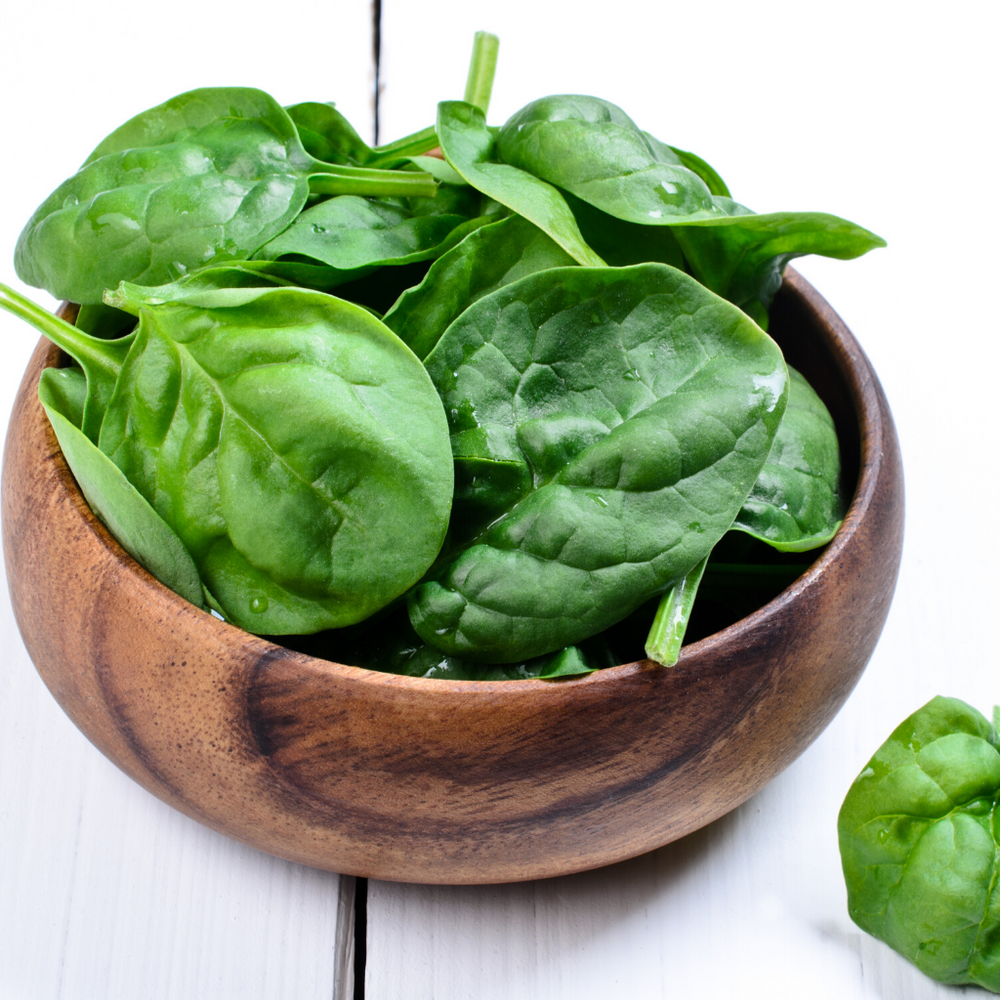 Iron Comparison Between Moringa and  Spinach
