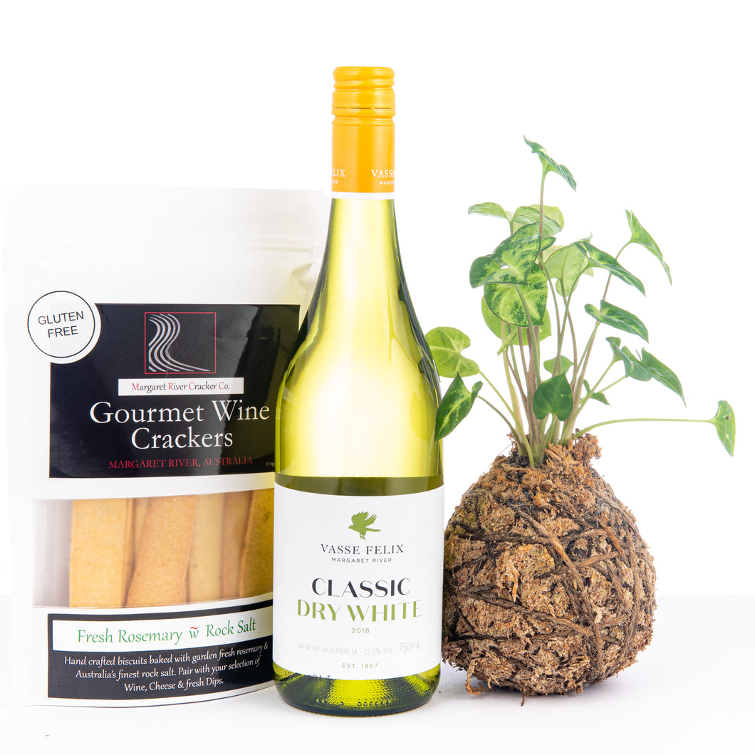 Plant Hamper, Wine Hamper