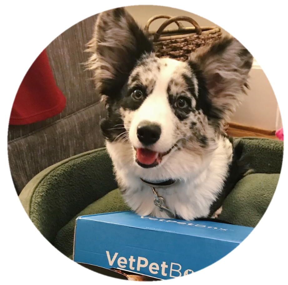 VetPet Box - Veterinarian Approved Monthly Subscription Box