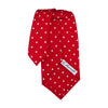 Silk Red Tie Polka Dots - Bohology