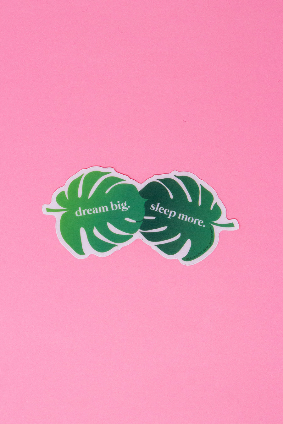 Dream Big, Sleep More Sticker