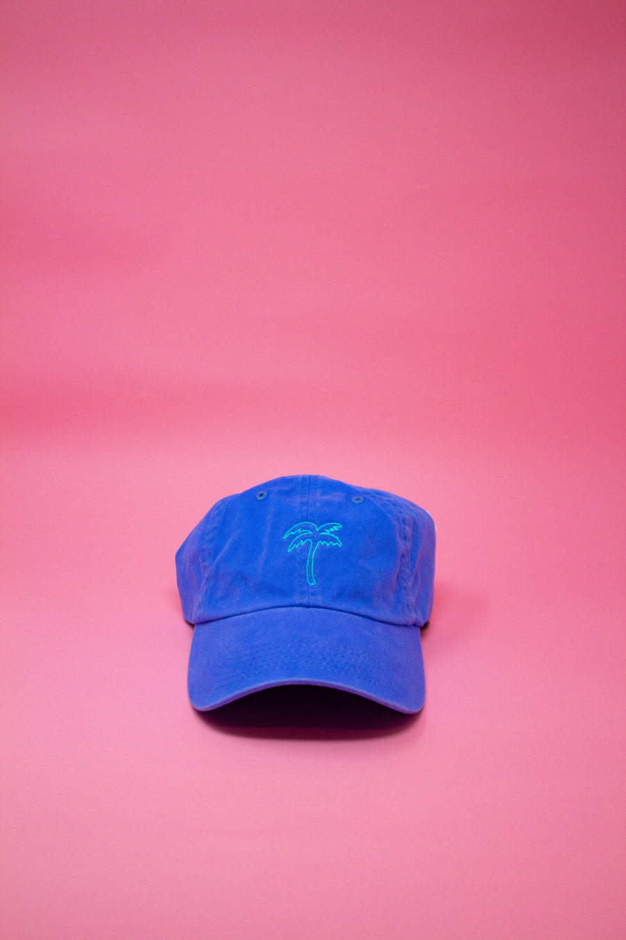 Blue Palm Tree Cap