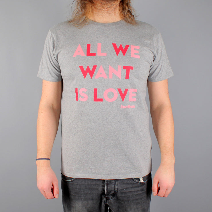 All We Want T-shirt Grey