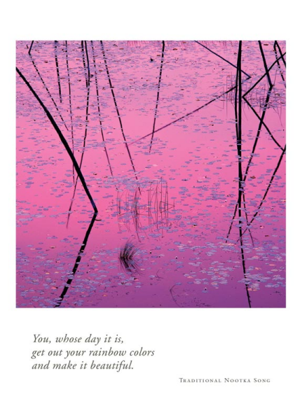Lily Pads at Dawn Birthday Card