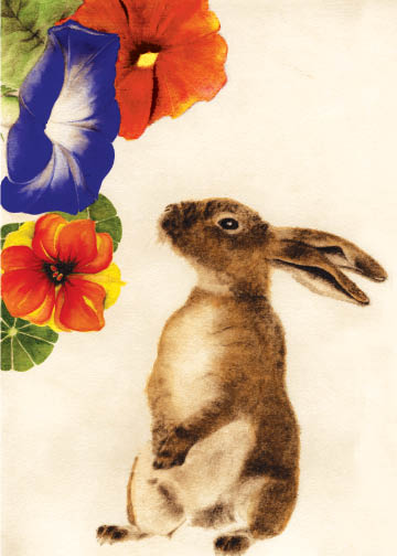 Rabbit & Morning Glory Birthday Card