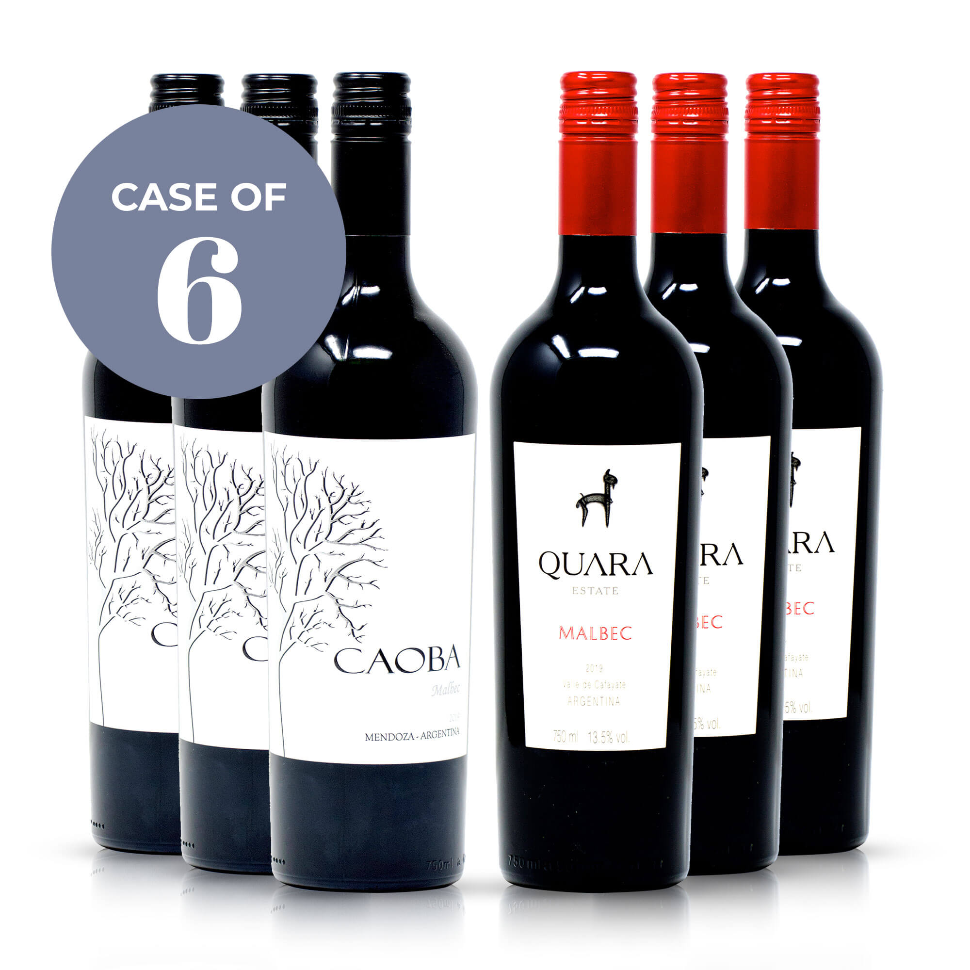 Favourite Malbec Wines
