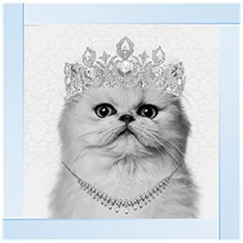 Cat Crown Grey | Silver Mirror Frame | 55cm x 55cm