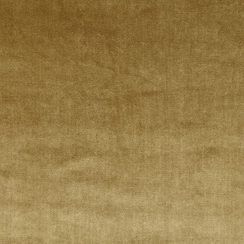 Prestigious Textiles Velour Curtain Fabric | Gold - Designer Curtain & Blinds