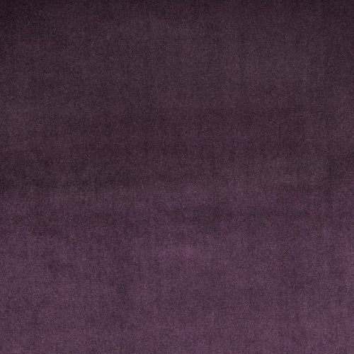 Prestigious Textiles Velour Curtain Fabric | Grape - Designer Curtain & Blinds