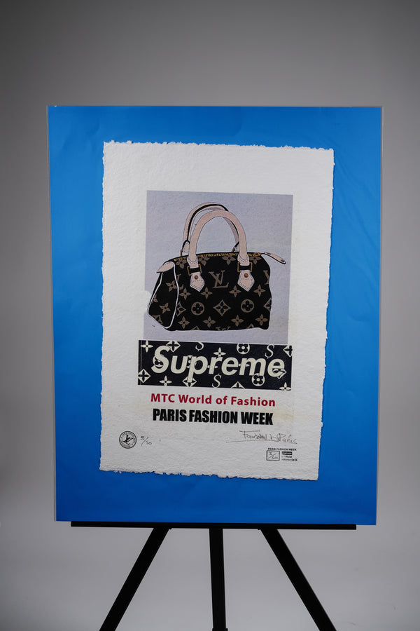 Supreme X Louis Vuitton Classic Purse Print