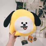 Bangtan Boys Bt 21 Nap Pillow