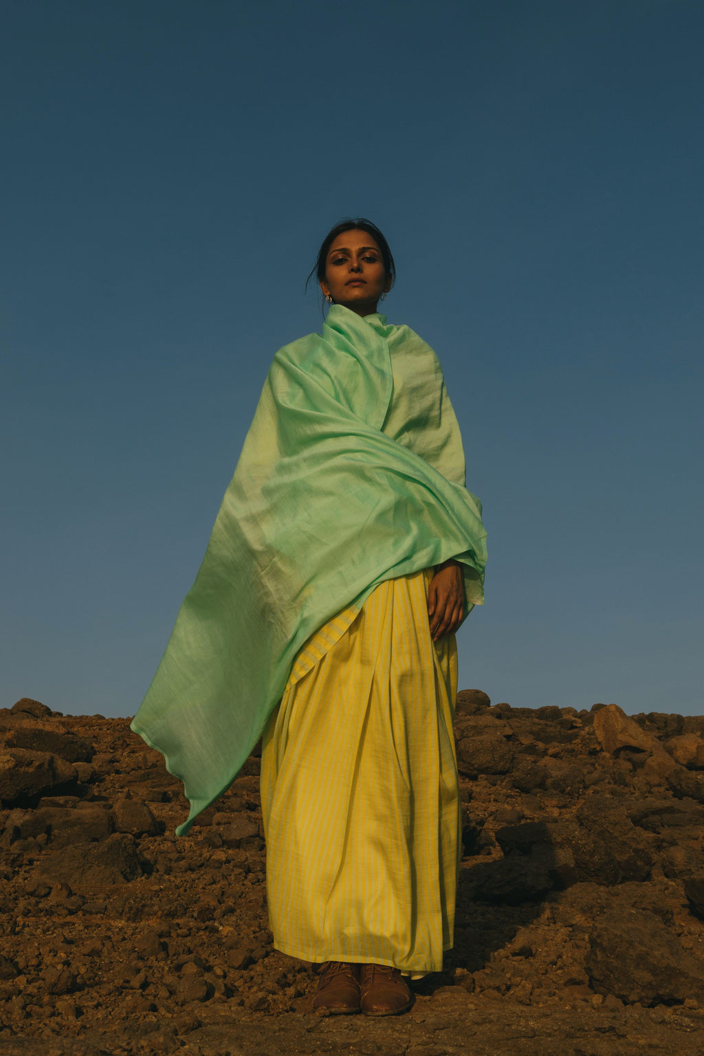 Antique jade and citron sari