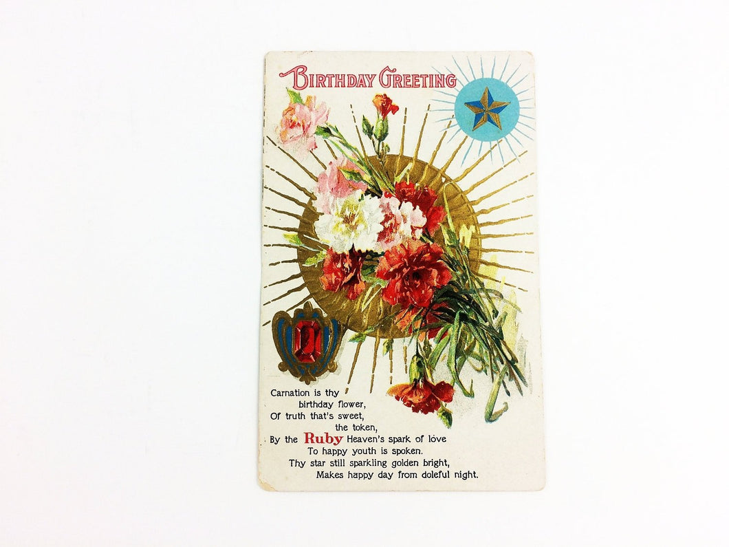 January Birthstone 1910 Postcard