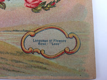 Load image into Gallery viewer, Antique Valentine Postcard Love in Roses