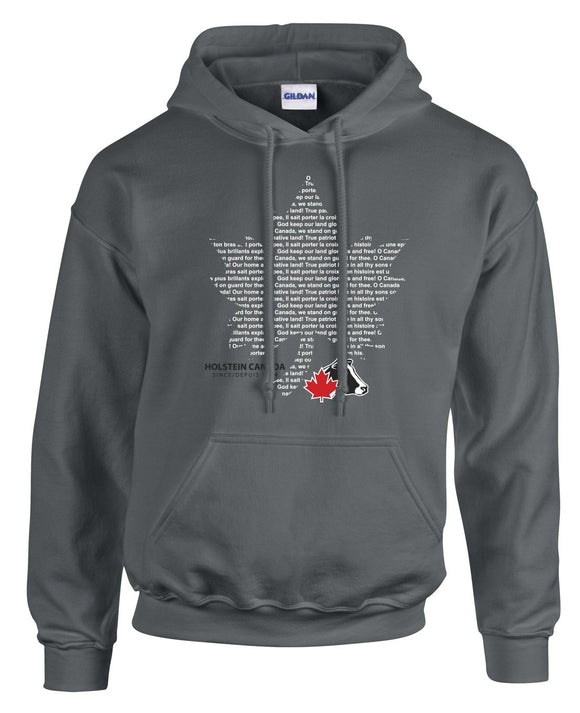 Adult Premium Hooded Sweatshirt – Oh Canada!