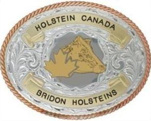 Deluxe Trophy Belt Buckle