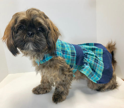 Plaid Dog Dress, Blue Green School Girl Look, Fashion Dog Clothing