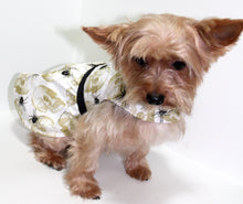 Load image into Gallery viewer, Dog Dress, Black Spiders, Gold Skulls, dresses for dogs, fashion dog