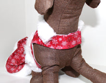Load image into Gallery viewer, Christmas Dog Dress, Red White Mrs Santa Claus Holiday fashion dogs dresses