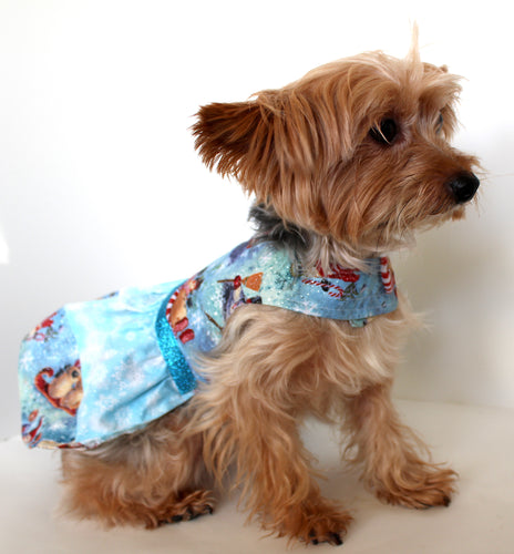 Christmas Dog Dress, Snowman Holiday, pretty blue fashion dogs dresses