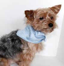 Load image into Gallery viewer, Fashion Dog Bandana, Silver Lace over Light Blue Casa Silk