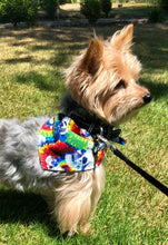 Load image into Gallery viewer, Dog Bandana, Tie-Dye Skull Rainbow Cotton