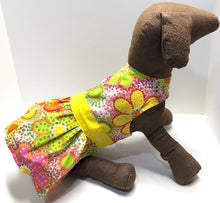 Load image into Gallery viewer, Groovy Dog Dress, XS S M, Yellow Floral Print fashion dogs dresses