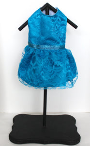Turquoise Dog Dress, Small, Beautiful Lace over Satin