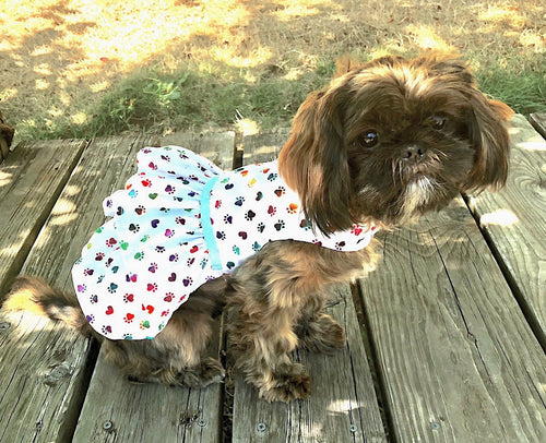 Cute White Dog Dress, Rainbow Dog Print