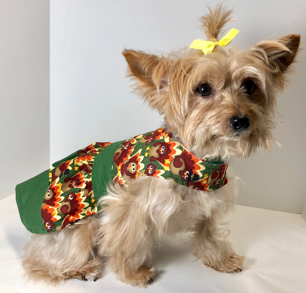 Thanksgiving Dog Dress, Pilgrim Turkey, Green Trim, holiday fashion dogs dresses