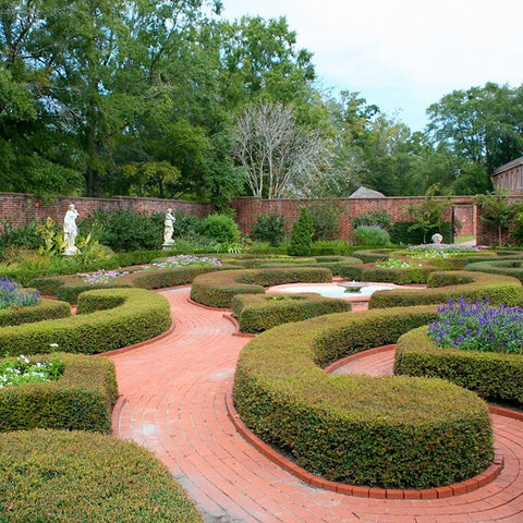 Inchbald Garden Design Course