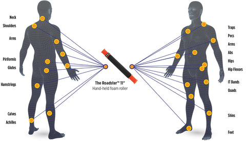 Tiger Tail Trigger Point Massage Stick 11 Body Chart