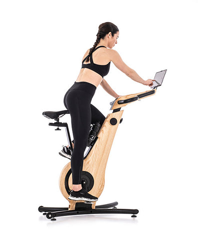 NOHrD Luxury Indoor Exercise Bike