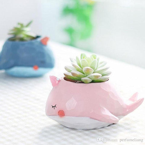 Dolphin Couple Flower Pot