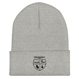 Grey beanie with symbols of the Bible, The Lord's Supper, Prayer, and Baptism (Ordinary means of grace)