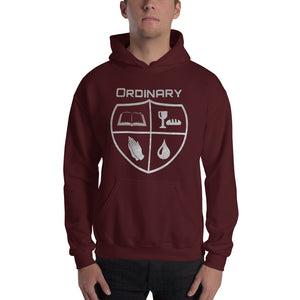 Ordinary means of grace reformed hoodie maroon