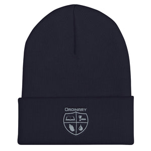 Navy beanie with symbols of the Bible, The Lord's Supper, Prayer, and Baptism (Ordinary means of grace)