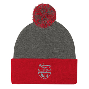 Ladies' Red and Dark Heather Grey knit cap with symbols of the Bible, The Lord's Supper, Prayer, and Baptism (Ordinary means of grace)
