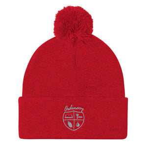 Ordinary means of grace reformed knit cap red