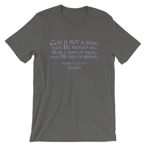 "Impassibility of God t-shirt gray ""God is not a man...""(Numbers 23:19)"