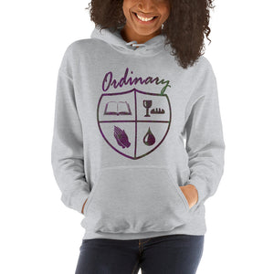 Ordinary means of grace reformed hoodie gray