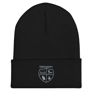 Ordinary means of grace reformed black beanie