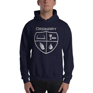 Ordinary means of grace reformed hoodie navy