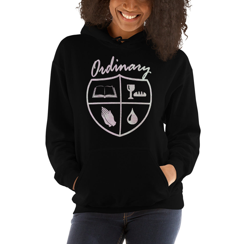 Ordinary means of grace reformed hoodie womens