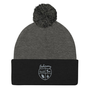 Ordinary means of grace reformed knit cap in black and gray