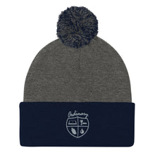 Load image into Gallery viewer, Ordinary means of grace reformed knit cap navy and gray