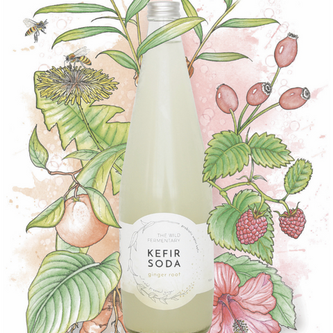 The Wild Fermentary Wild Kefir Soda Ginger Root 750ml