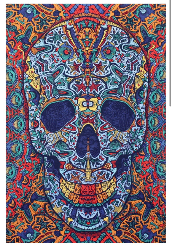 3D Skull Mini Tapestry 30x45 - Artwork by Chris Pinkerton