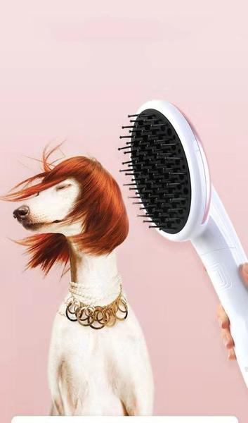 Pet Grooming Hair Dryer with Slicker Brush, Adjustable Temperature Settings