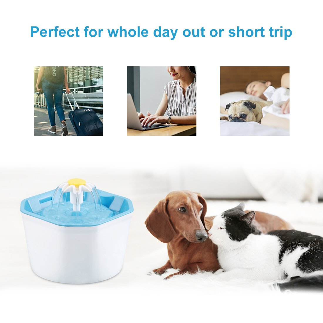 Pet automatic water dispenser AUTOMATIC ELECTRIC WATER DISPENSER FOR CATS AND DOGS